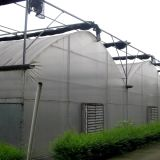 식물성 성장하고 있는을%s 농업 Multispan 플레스틱 필름 온실