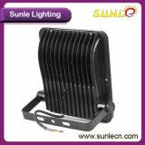 가장 밝은 플러드 빛 (SLFK25 50W)가 50W 옥외 LED 일에 의하여 점화한다