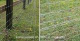 Reticolato esagonale del coniglio della rete metallica di Sailin