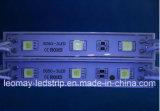 LED 지구 모듈 5050 색깔 LED 모듈을 쫓는 방수 주입 DC 12V
