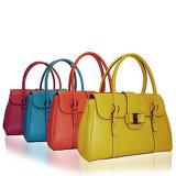projetos clássicos da forma de sacos das senhoras para coleções das mulheres