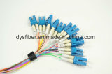 12 de Optische Kabel van de Vezel van de vezel MTP/MPO