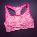 適性のヨガの体操の摩耗の女性の女性はスポーツのブラを卸し売りする