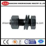 Boulons de haute résistance pour la structure métallique