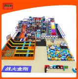 Cour de jeu d'intérieur de jouet en plastique de Mich