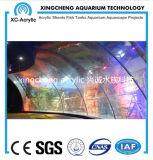 PMMAの物質的なアクリルガラスシートのアクアリウム