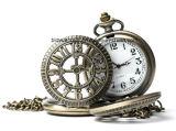 Vinage Búho de cuarzo reloj de bolsillo con la cadena
