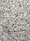 Het grijze Grijze Graniet van de Tegels van het Graniet/van Plakken G603 Ab