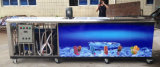 Машина Lolly льда в 36000PCS/Day