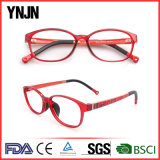 Ynjn marque vos propres lunettes optiques Tr90 Frame Kids (YJ-G81218)