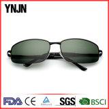 Lunettes de soleil carrées polarisées promotionnelles de Mens de Ynjn avec la FDA de la CE (YJ-F8285)