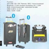 """10 """" heiße Dichtungen Bluetooth beweglicher nachladbarer Lautsprecher"""
