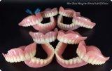 В полной мере протеза с акриловым зуба в стоматологической Minghao Lab