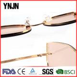 2017 Lunettes de lunettes de lunette de lunette de lunettes de créateurs (YJ-F85169)