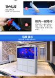 현대 디자인 공간 장식 가정 호텔을%s 아크릴 플라스틱 정연한 수족관 어항