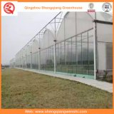 꽃을%s 농업 또는 상업적인 플레스틱 필름 정원 녹색 집