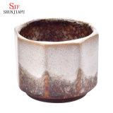 Nueva maceta de cerámica al por mayor, bonsai creativo de la Multi-Carne