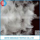 De gewassen Witte Veer van de Eend voor de Textiel van het Huis