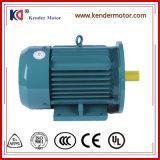 Motor elétrico do desempenho geral elevado para a máquina de empacotamento