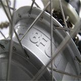 250W 36V En15194 E Schleife-leistungsfähiges elektrisches Fahrrad (RSEB-302)