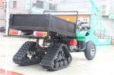 雪タイヤの大きい記憶を用いる4ヘッドランプ250cc ATV