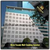 Het decoratieve Geperforeerde Comité van het Aluminium voor de Bekleding van de Voorzijde van de Muur van het Aluminium