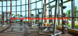 Forma fisica, strumentazione di ginnastica, banco dell'arricciatura del Strumentazione-Braccio della costruzione di corpo (PT-939)