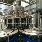 (자동) 턴키 프로젝트 주스 생산 공장