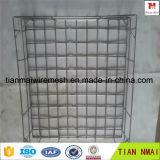 Cestino della rete metallica dell'acciaio inossidabile del fornitore Ss304 della Cina/cestino di memoria