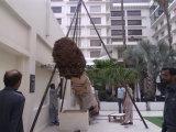 Пальмы стеклоткани напольной пользы искусственние
