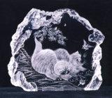 Gravure de laser du cristal 3D