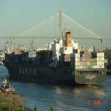 Lcl ou FCL Contanier Logistics Forwarder From Guangzhou/Shenzhen a Santos Brasil