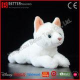 De Realistische Gevulde Dierlijke Kat van het Stuk speelgoed van de Pluche ASTM Zachte Witte voor Kinderen