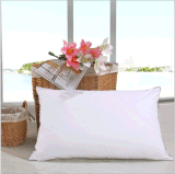 L'Oreiller hypoallergénique Premium Soft vers le bas, le canard vers le bas oreiller