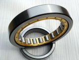 High Roller Bearing Calidad cylinderical Nj2205