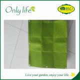 Onlylife sentía el plantador vertical económico de la pared toda la talla