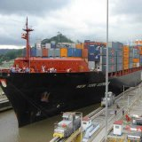 Lcl ou FCL Contanier Logistics Forwarder From Guangzhou/Shenzhen à Santos Brésil