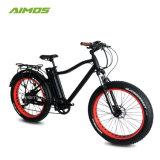 شاطئ [إبيك] ثلج درّاجة كهربائيّة مع [بفنغ] [750و] محرّك