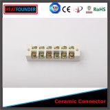 Scheda di collegamenti terminale di ceramica dell'allumina 99