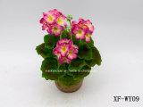 Géranium artificiel/en plastique/en soie Bush (XF-WY09) de fleur