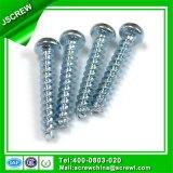 Auto-atarraxantes personalizado de rosca de parafuso M2,5 formando para o galpão de plástico