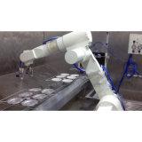 Main de pulvérisation de robot