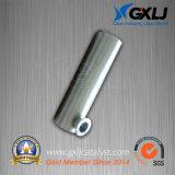 둥근 플랜지를 가진 가스 기관 (CNG 액화천연가스 LPG)를 위한 촉매 Mulffler