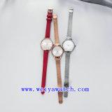 Montre de dames en gros d'acier inoxydable de montre (WY-17035C)