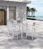 Tabella pranzante di Venezia del patio del rattan del giardino della casa dell'hotel del ristorante di vimini esterno dell'ufficio e presidenza (J675)