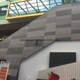 mattonelle materiali della facciata dell'argilla modificate Anti-Lepidottero di 300X300mm