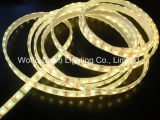 Striscia flessibile di alta luminosità LED con approvazione del Ce per il punto impermeabile IP65