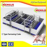 Caja Farrowing multifunción con piso de hierro fundido