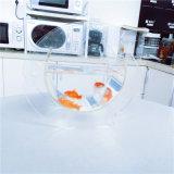 Mini tanque de peixes acrílico feito sob encomenda