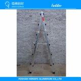 10のステップアルミニウム梯子は農業の使用をする
